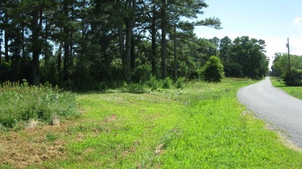 Land - Parksley, VA (photo 2)
