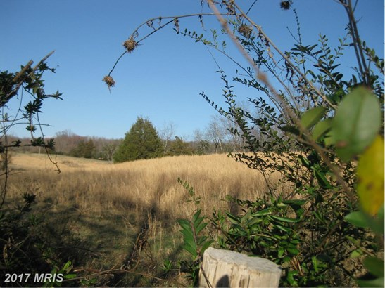 Lot-Land - LIGNUM, VA (photo 1)