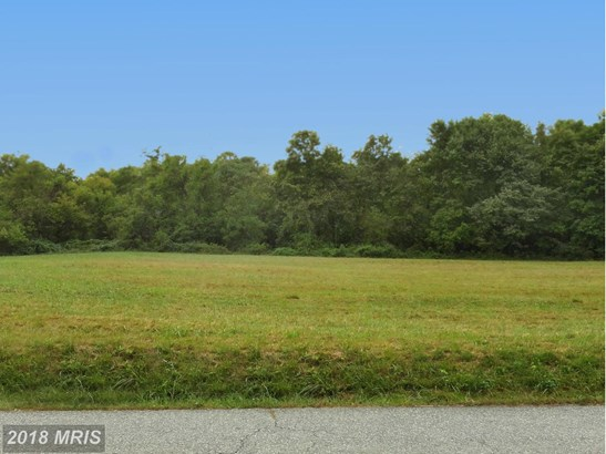 Lot-Land - CONOWINGO, MD (photo 2)