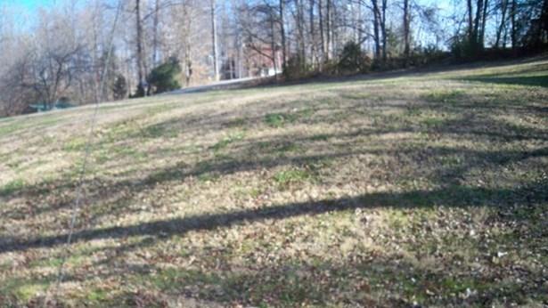 Land - Farmville, VA (photo 5)