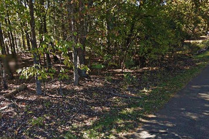 Lot, Lots/Land/Farm - Hardy, VA (photo 4)