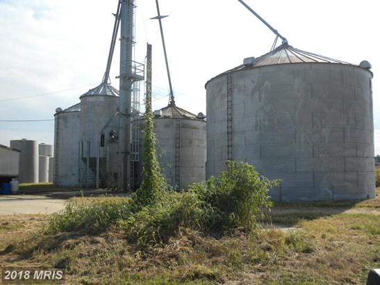 Lot-Land - CHURCH HILL, MD (photo 3)