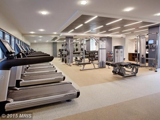 Mid-Rise 5-8 Floors, Contemporary - ALEXANDRIA, VA (photo 5)