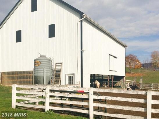 Farm House, Detached - BIG POOL, MD (photo 2)