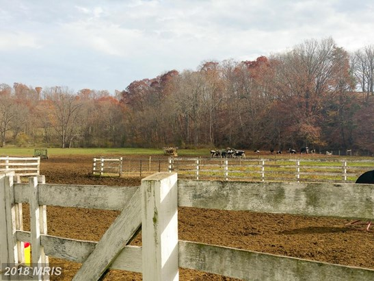 Farm House, Detached - BIG POOL, MD (photo 4)