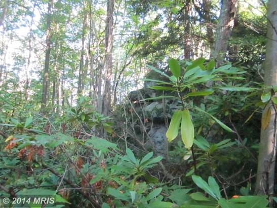 Lot-Land - OAKLAND, MD (photo 3)