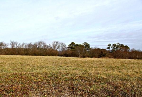 Land - Atlantic, VA (photo 3)