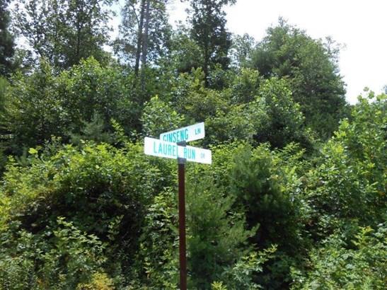 Lot, Lots/Land/Farm - Callaway, VA (photo 2)