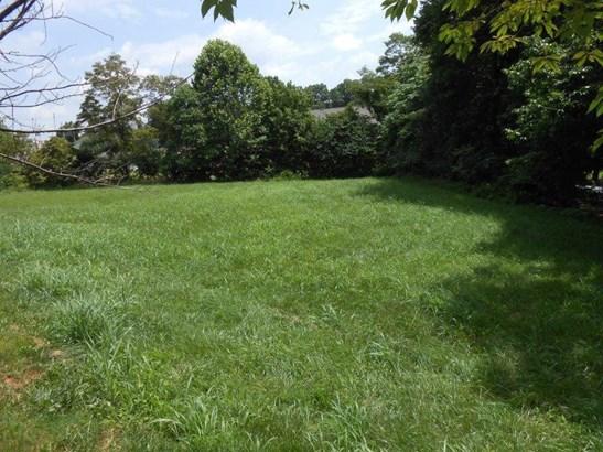 Lot, Lots/Land/Farm - Rocky Mount, VA (photo 5)