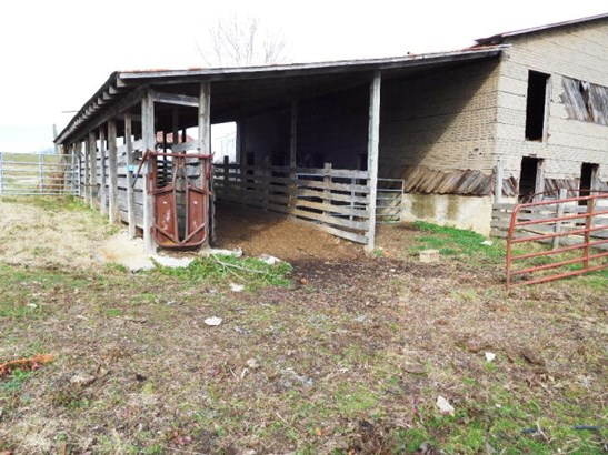 Residential, Farmland, Orchard, Horse Farm, Beef Cattle - Lots/Land/Farm (photo 5)