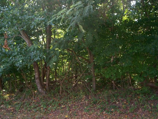 Lot, Lots/Land/Farm - Danville, VA (photo 3)