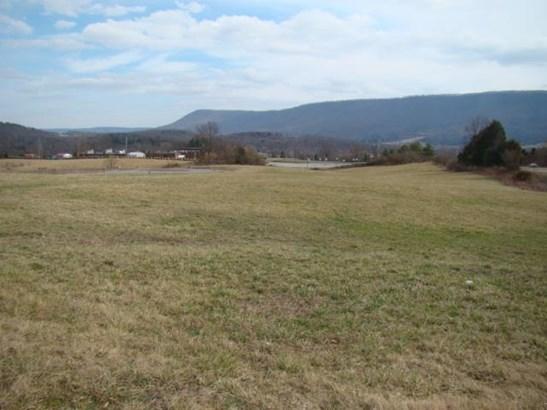 Lot, Lots/Land/Farm - Pembroke, VA (photo 3)