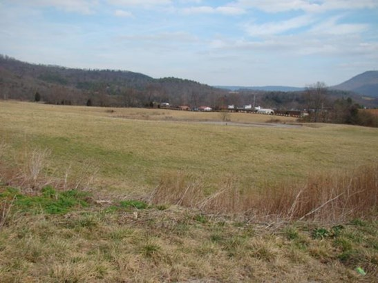 Lot, Lots/Land/Farm - Pembroke, VA (photo 5)