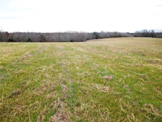 Lots/Land/Farm - Farmland, Timber, Orchard, Horse Farm, Beef Cattle (photo 3)