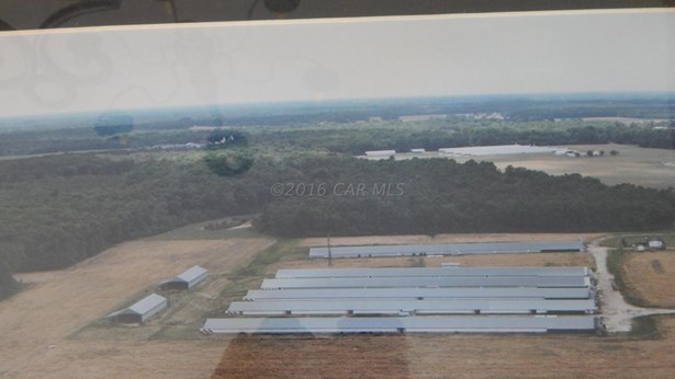 Farms - Pocomoke City, MD (photo 1)
