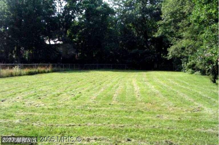 Lot-Land - BALTIMORE, MD (photo 1)