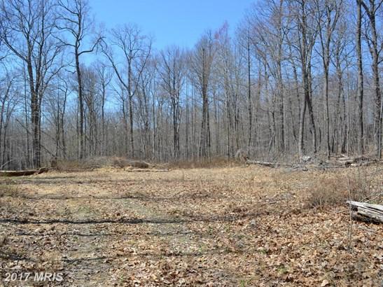 Lot-Land - SPARKS, MD (photo 1)