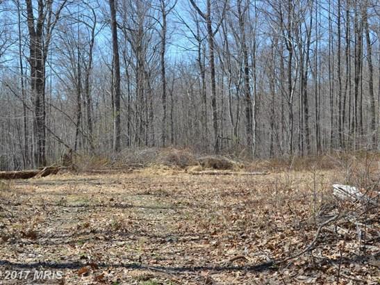 Lot-Land - SPARKS, MD (photo 3)
