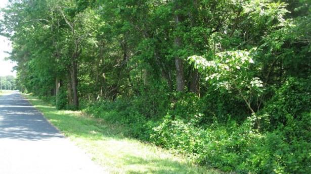Land - Parksley, VA (photo 3)