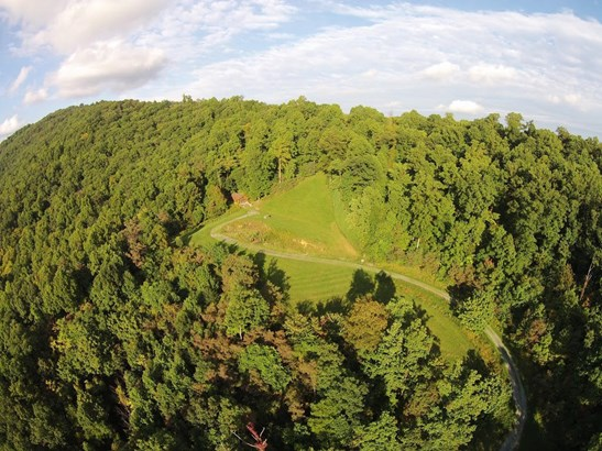 Land (Acreage), Lots/Land/Farm - Blue Ridge, VA (photo 3)
