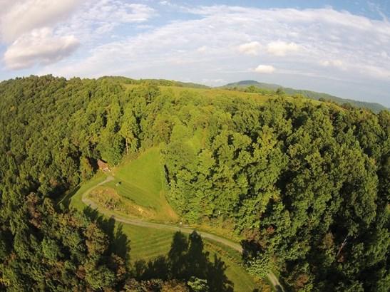 Land (Acreage), Lots/Land/Farm - Blue Ridge, VA (photo 4)