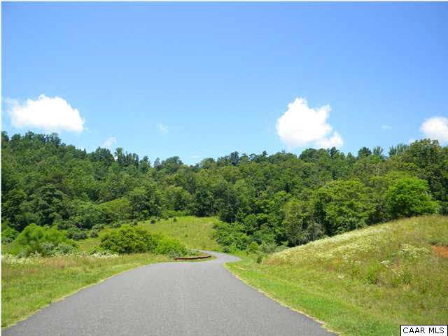 Land - CHARLOTTESVILLE, VA (photo 4)