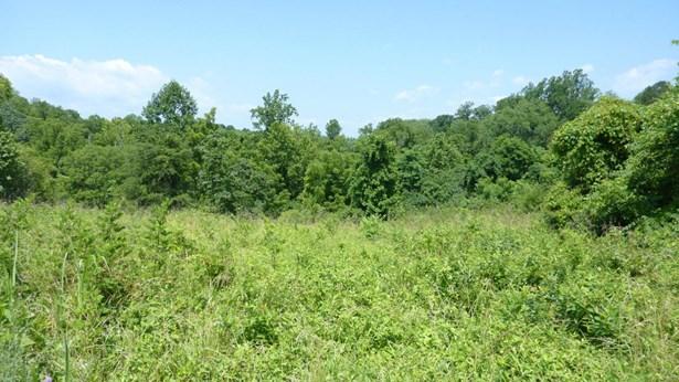 Lot, Lots/Land/Farm - Gretna, VA (photo 2)
