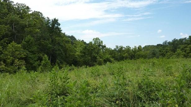 Lot, Lots/Land/Farm - Gretna, VA (photo 3)