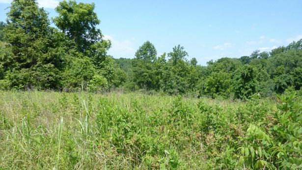 Lot, Lots/Land/Farm - Gretna, VA (photo 5)