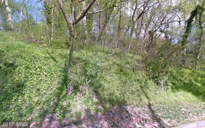 Lot-Land - BETHESDA, MD (photo 4)