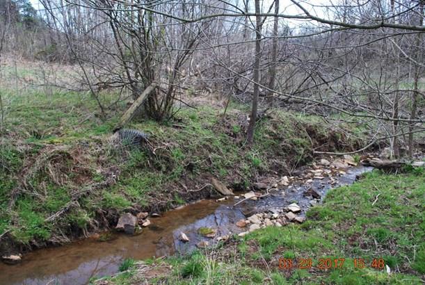 Land (Acreage), Lots/Land/Farm - Vinton, VA (photo 1)