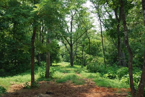 Land (Acreage), Lots/Land/Farm - Vinton, VA (photo 2)