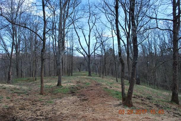 Land (Acreage), Lots/Land/Farm - Vinton, VA (photo 3)