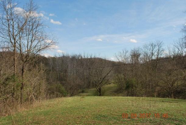 Land (Acreage), Lots/Land/Farm - Vinton, VA (photo 5)