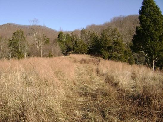 Land (Acreage), Lots/Land/Farm - Troutville, VA (photo 1)