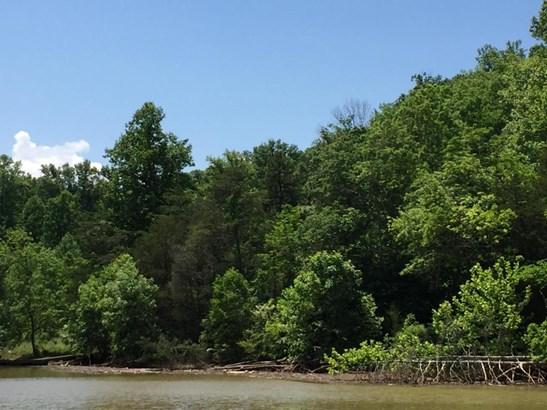Lot, Lots/Land/Farm - Pittsville, VA (photo 3)