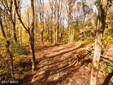 Lot-Land - CROWNSVILLE, MD (photo 1)