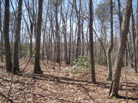 Land (Acreage), Lots/Land/Farm - Huddleston, VA (photo 2)
