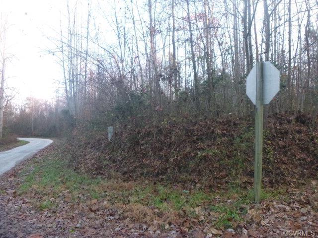 Lots/Land - Mattaponi, VA (photo 4)