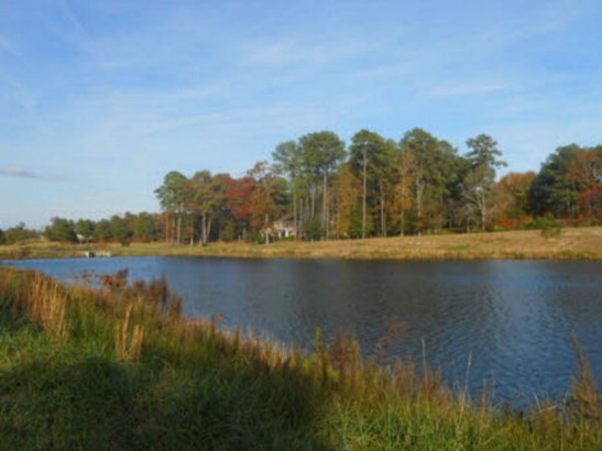 Lots/Land/Farm, Colonial,Farmette,Eastern Shore Style - Parksley, VA (photo 5)