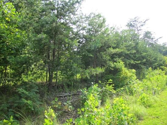 Lot, Lots/Land/Farm - Glade Hill, VA (photo 3)