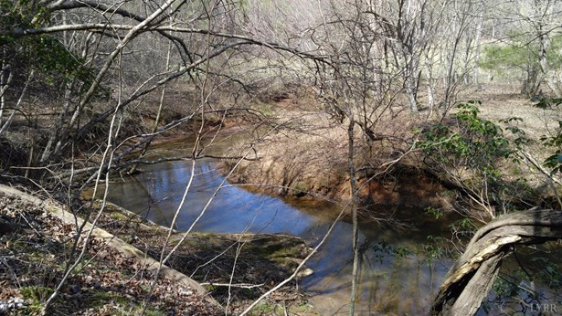 Land - Bedford, VA (photo 4)
