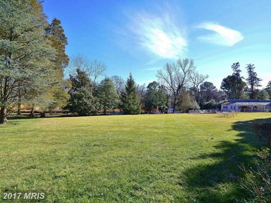 Manor, Detached - ALEXANDRIA, VA (photo 4)