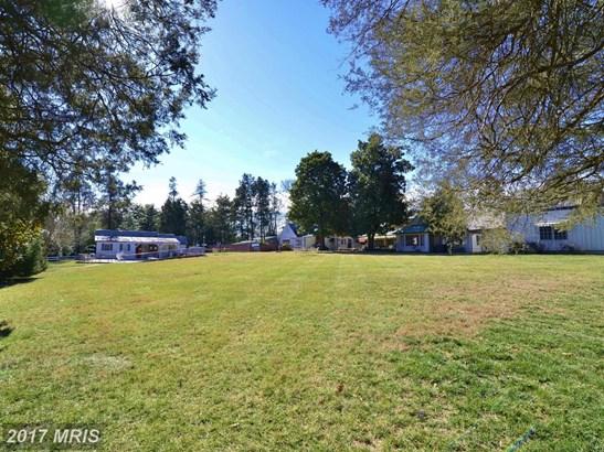 Manor, Detached - ALEXANDRIA, VA (photo 5)