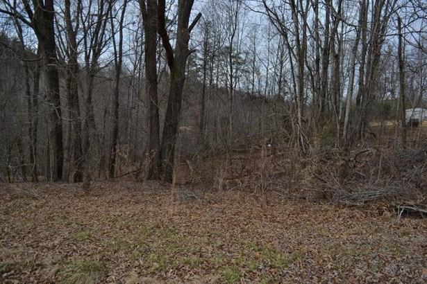 Lot, Lots/Land/Farm - Hardy, VA (photo 5)
