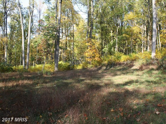 Lot-Land - SMITHSBURG, MD (photo 1)