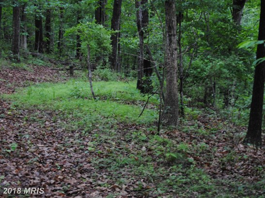 Lot-Land - WESTMINSTER, MD (photo 4)