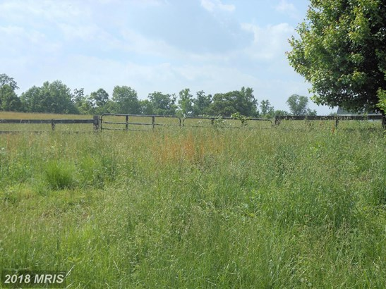 Lot-Land - NORTH EAST, MD (photo 3)