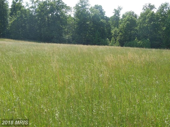 Lot-Land - NORTH EAST, MD (photo 5)