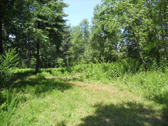 Land (Acreage), Lots/Land/Farm - Fincastle, VA (photo 1)